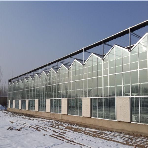 玻璃智能温室大棚