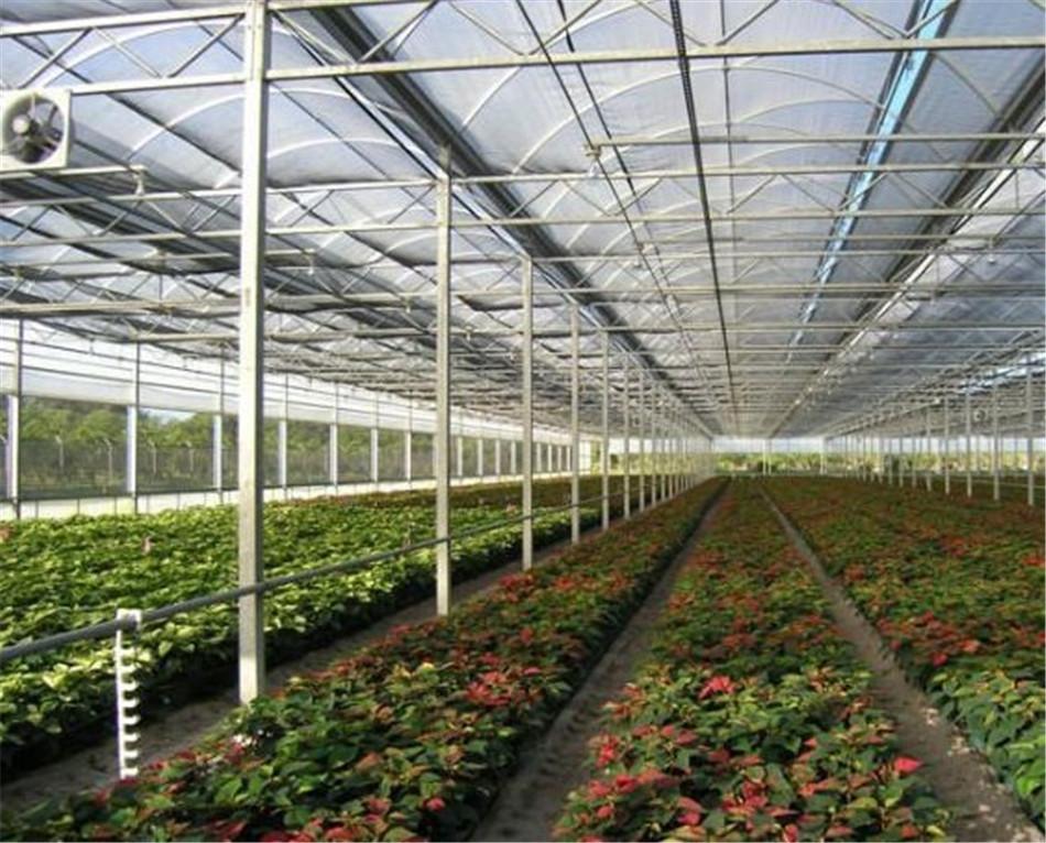 北京大兴种植温室