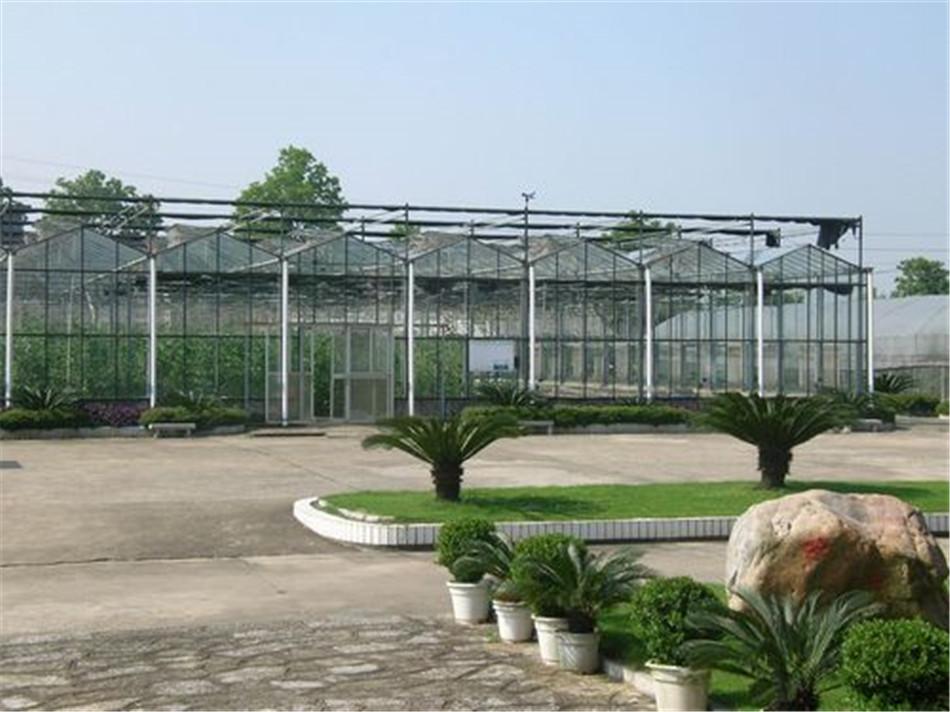 花卉市场温室